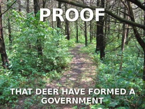 Proof the deer have formed government